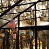 Stringlight tuinverlichting Weltevree