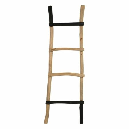 Harry ladder Luzo