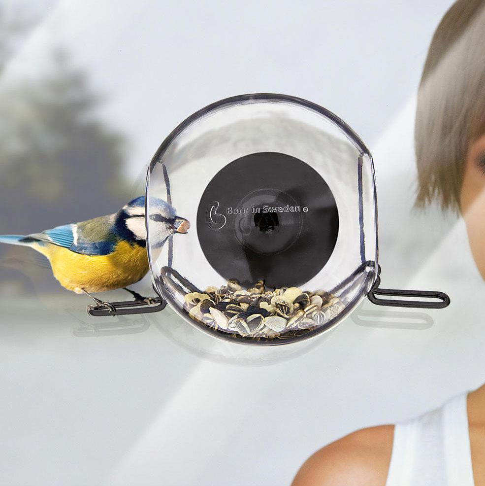 Birdfeeder Kit vogelhuisje Born in Sweden