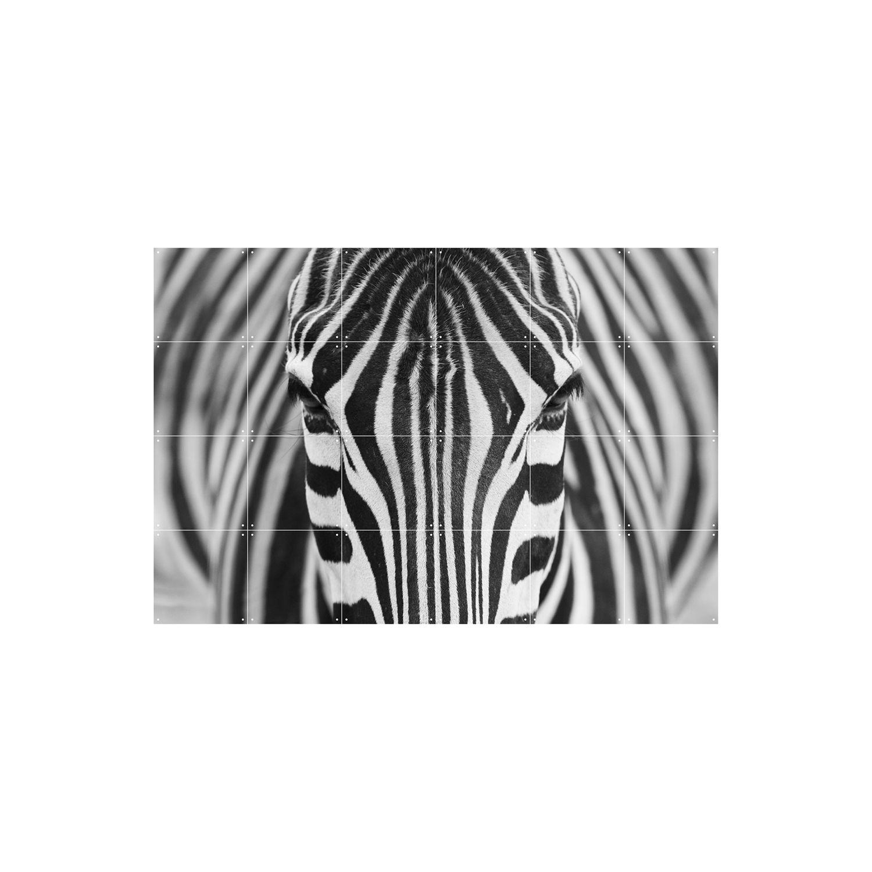 OP = OP - Zebra wanddecoratie Ixxi 80x120cm