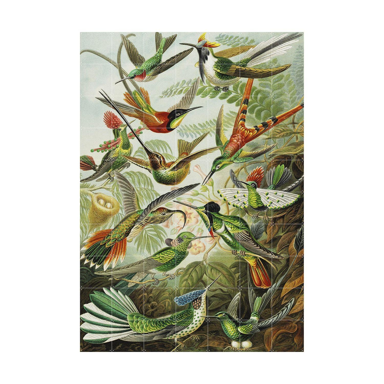 OP = OP - Hummingbirds wanddecoratie Ixxi 200x140cm