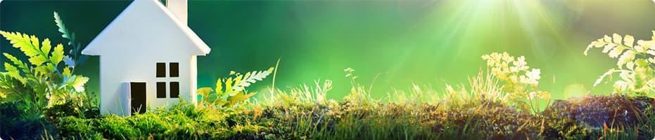 Musthaves en milieu